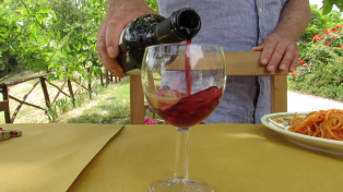 Fresh wine from the Marche Region in Italy.