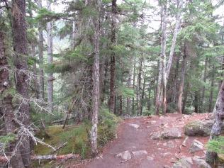 Hiking along the Chilkoot Goldrush Trail