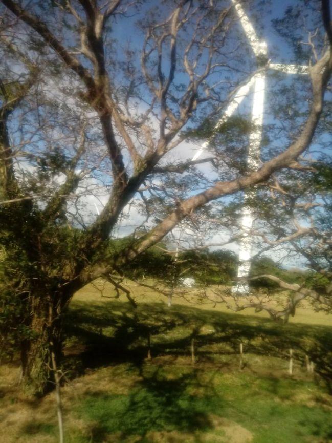 wind turbines, Nicaragua, travel,